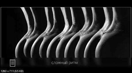 Воздействие композиции. Сечение и перспектива (2017) HDRip