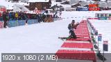 Биатлон. Кубок Мира 2017-18. 3-й этап. Анси (Франция). Мужчины. Спринт 10 км [15.12] (2017) IPTV 1080i