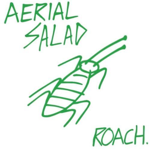 Aerial Salad - Roach. (2017)