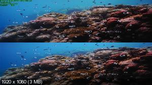 Последний риф 3D  / The Last Reef 3D ( by Ash61) Вертикальная анаморфная стереопара