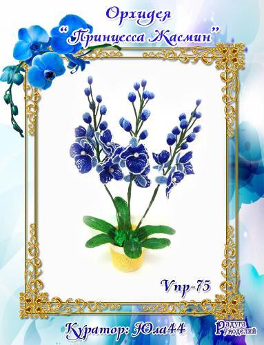 """Галерея выпускников: Орхидея """"Принцесса Жасмин"""" 3ce44ca9acade4c8301f4fae75d73859"""
