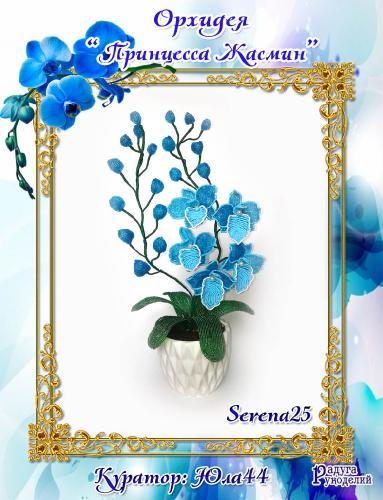 """Галерея выпускников: Орхидея """"Принцесса Жасмин"""" 8dc230eb76c32f1093ac1b63ea529b59"""