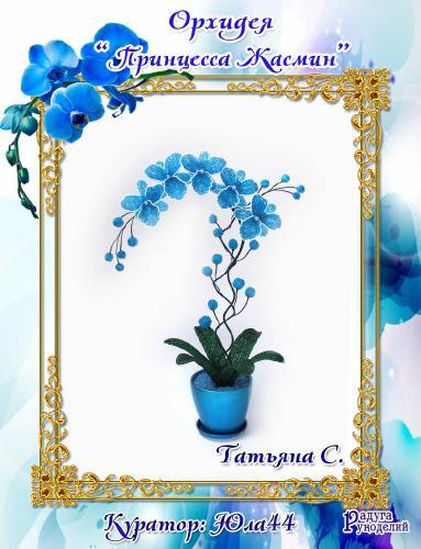 "Галерея выпускников: Орхидея ""Принцесса Жасмин"" 8e0959b36a82058abae39bbca01914ed"