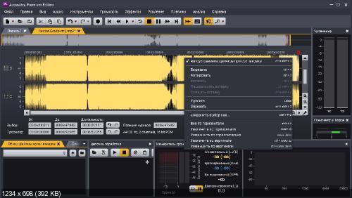 Acoustica Premium Edition 7.1.8 + Rus