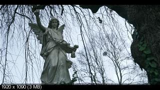 Хорошая драка / The Good Fight [Сезон: 2 (13)] (2018) WEB-DL 1080p | BaibaKo, ColdFIlm