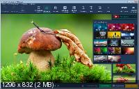 Movavi Photo Editor 6.3.0 Portable by TryRooM