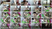 Defecation: (BigTitsAlisa) - One morning of our lives [FullHD 1080p] - Amateur, Lesbians